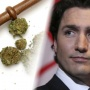 Canada makes history by mandating legalization of marijuana!