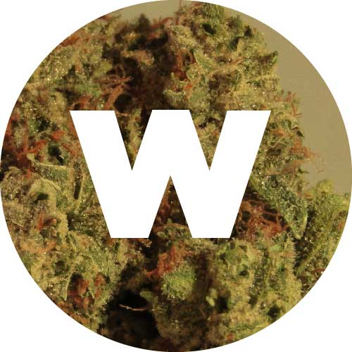 """Willie's Wednesdays"" Exclusive $50 Willie's Reserve Bundle!"